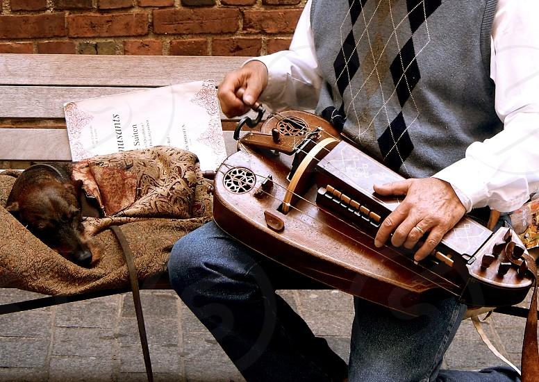 Hurdy Curdy. Music. Street musician. Dog.  photo
