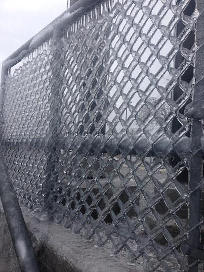 Frozen fence photo