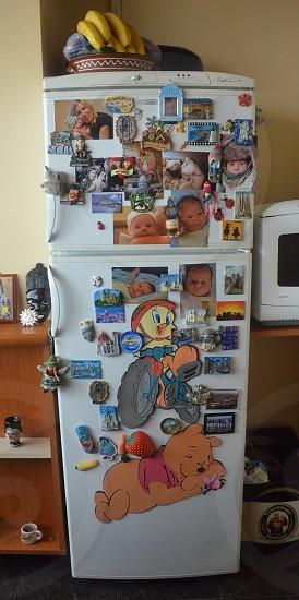 winnie the pooh and treety bird refrigerator magnets on white 2 door refrigerator photo