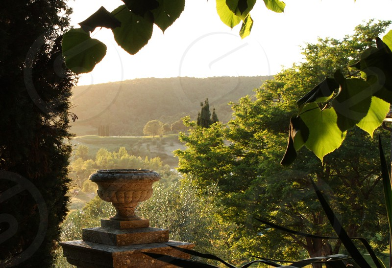 Sunset from a Tuscan garden photo