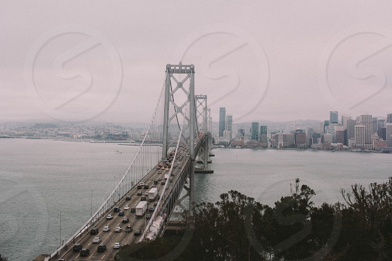 passenger vehicles on the bridge photo