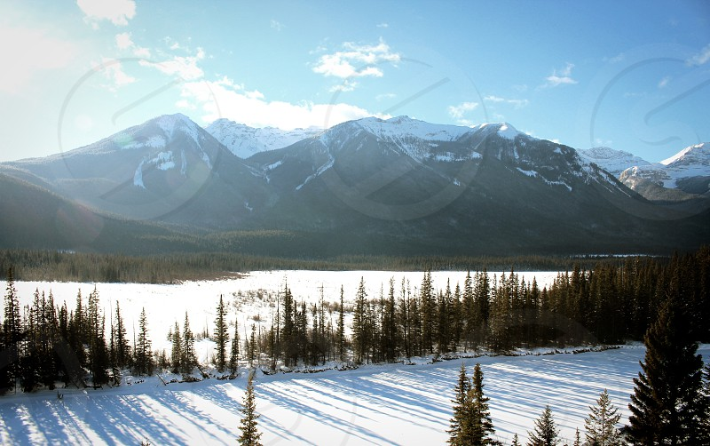 Mountains forest trees sunshine Banff Alberta winter snow sun travel explore photo