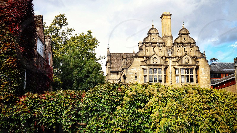 Oxford Oxfordshire - ivy old architecture photo
