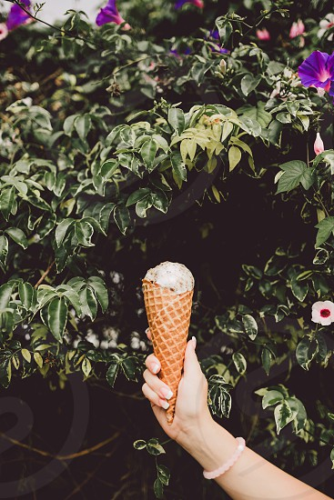 grey ice cream on brown wafer cone near green leaf plants during daytime photo