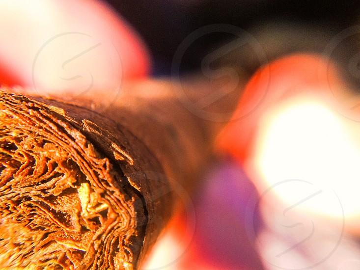 Cuban cigar photo