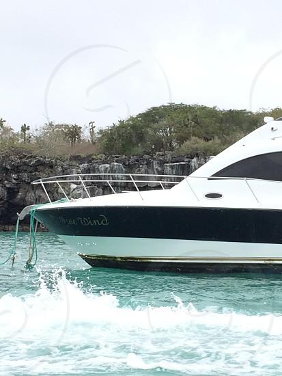 white and black free wind yacht photo