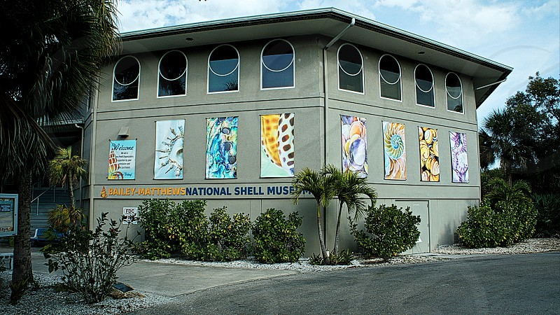 Bailey Matthews National Shell Museum photo