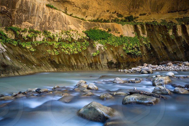 Hiking The Narrows in Zion National Park. photo