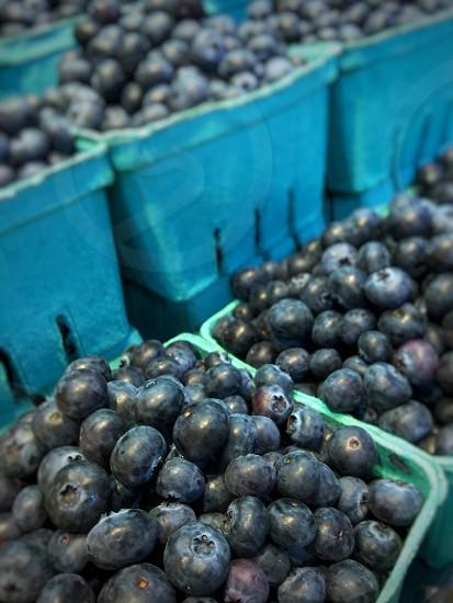 Monochrome blueberries farmers market fruit Granville Island Vancouver food blue photo