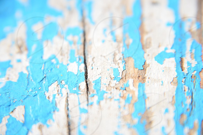 close up photo of blue and white painted brown wood photo
