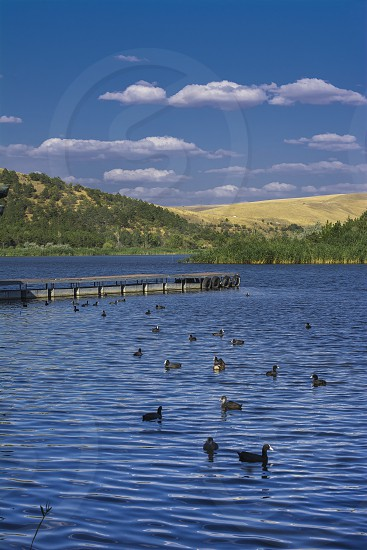 Lake Canards Blue Sky Clouds Still Chill Idyllic Travel Weekend photo