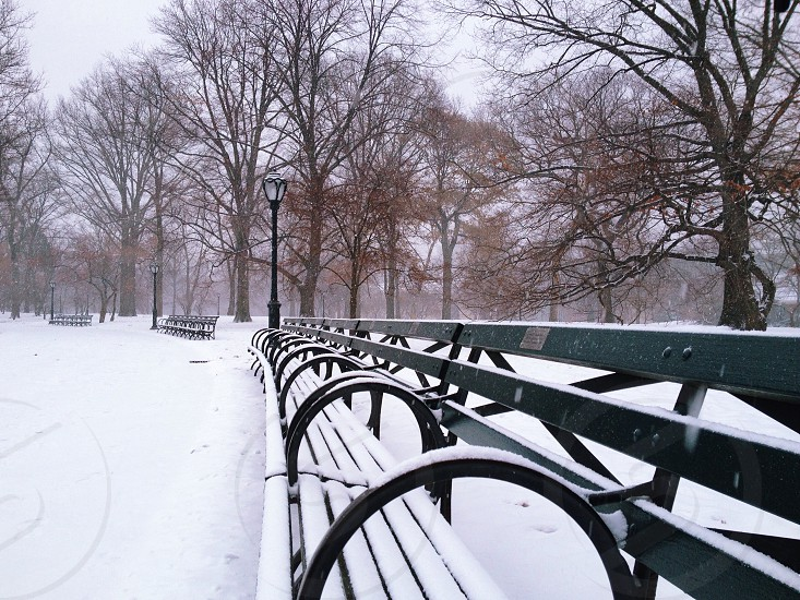 snow covered green park benches photo