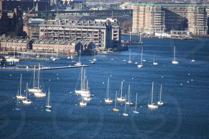 Boston harbor ocean sailboats buildings photo