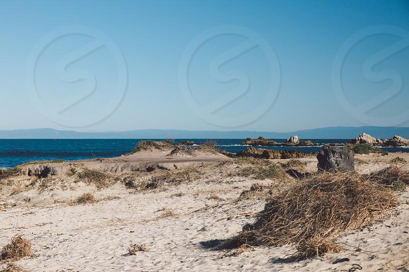 Asilomar State Beach - Pacific grove photo