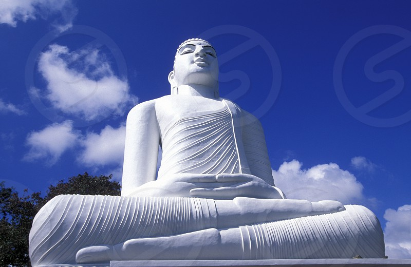 the Big Buddha at the Kandy Temple in the town of Kandy of Sri Lanka in Asien. photo