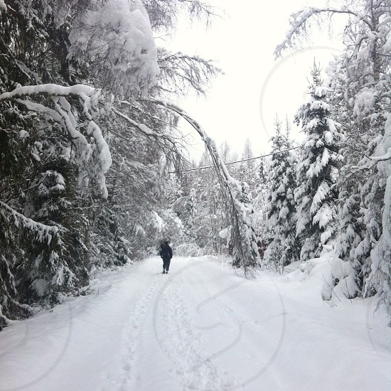 person standing on snow road view photo