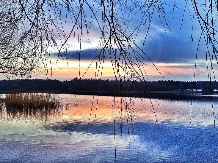 Calm lake Sweden photo