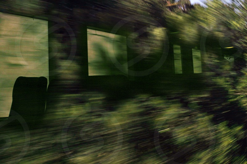 Train in motion passing through a zone of green vegetation photo