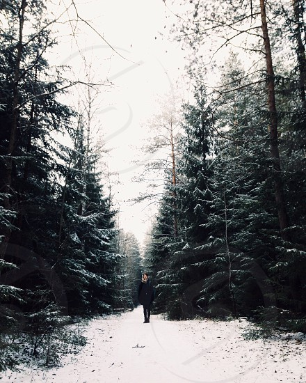 person wearing black coat standing in woods beside trees during daytime photo