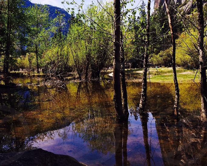 Mirrored Lakes at Yosemite CA photo
