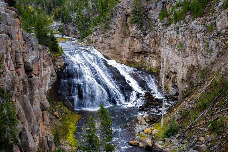 Gibbon Falls in Yellowstone National Park photo