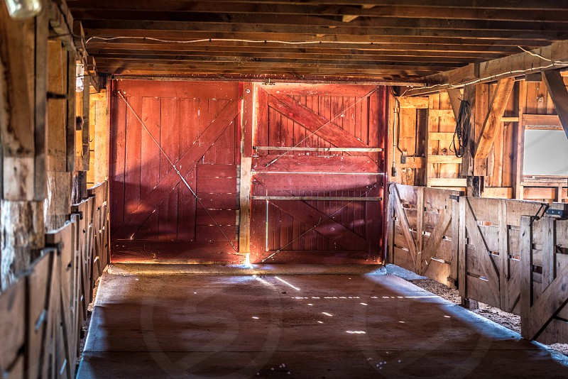 Inside a horse barn with a backlit red door in rural Wyoming. photo