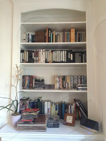 Lovely organised bookshelf. Homely looking plant on the sideboard. photo