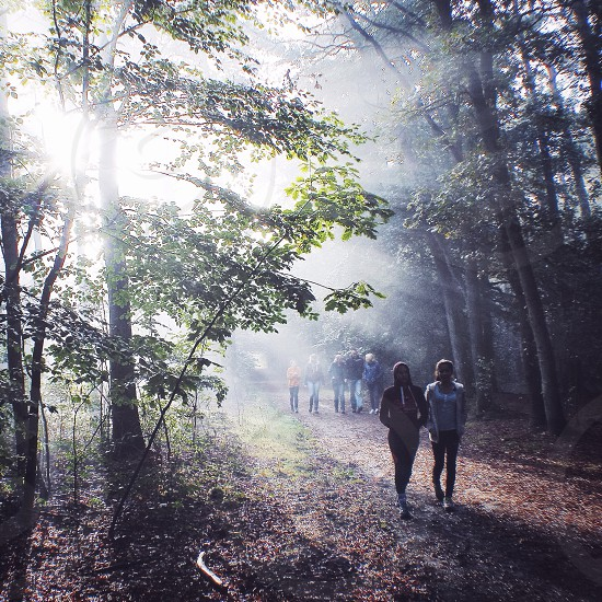 group of people walking on dirty pathway surrounded by foggy trees photo