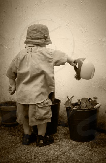 child watering the plants on pots photo