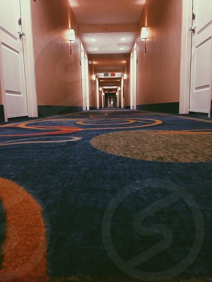 blue area rug photography photo