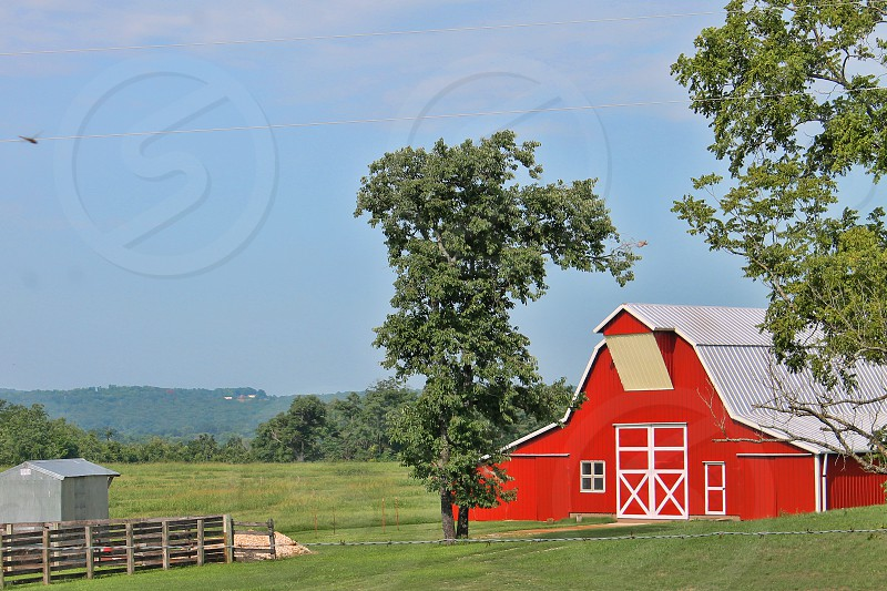 A bright red barn on a green meadow. photo
