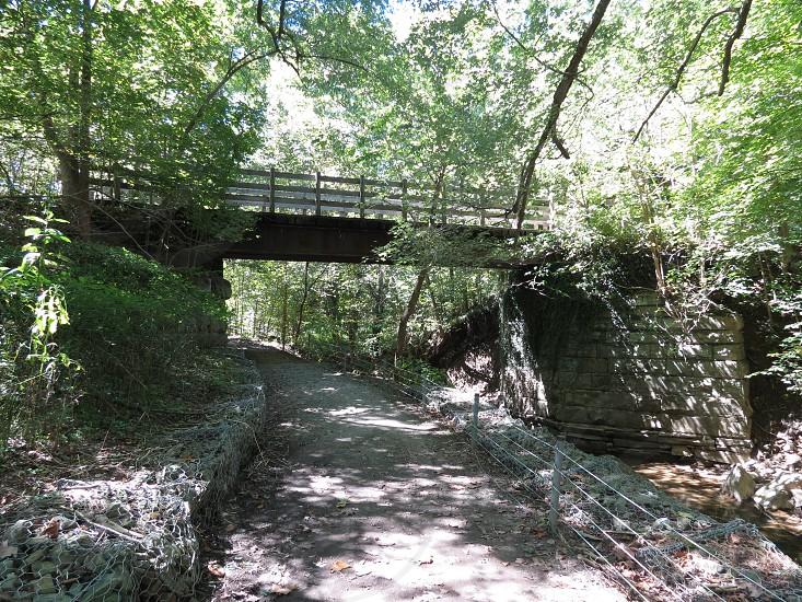 bridge pathway trees outdoors photo