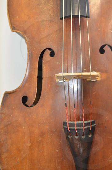 Music strings photo