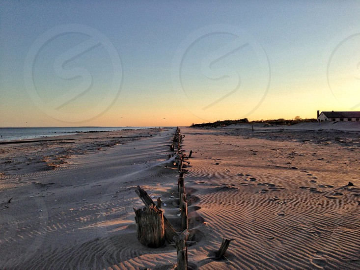brown sanded beach photo