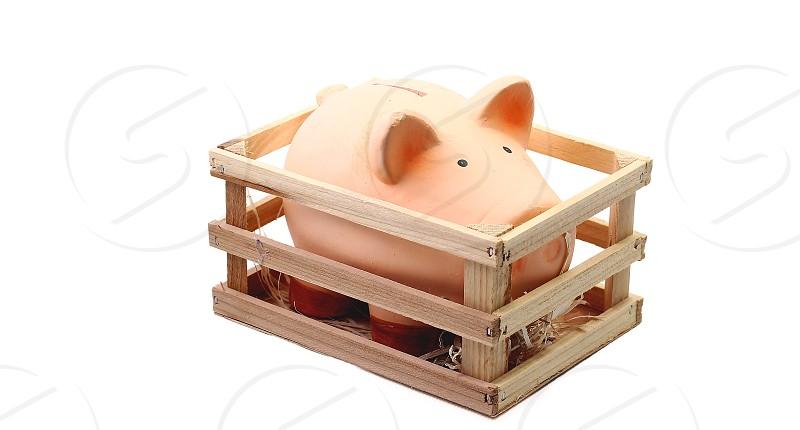 Piggy bank concept on white photo