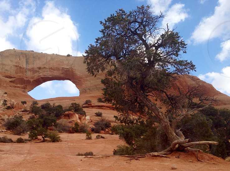 utah red rock arches photo