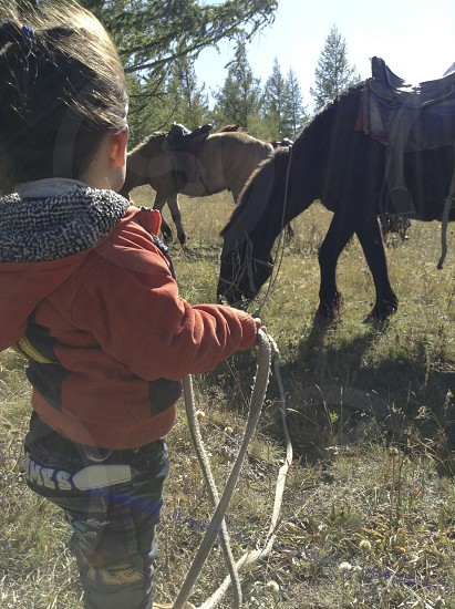 Horse and child photo