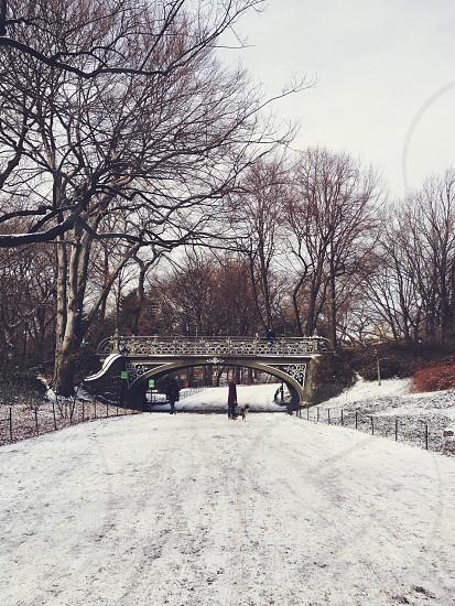 view of a snowy bridge photo