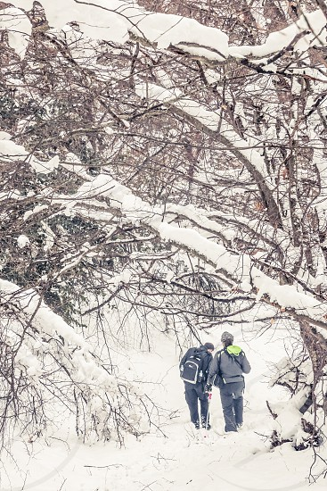 Two Men Friends Hiking In A Snowy Forest Landscape With Trees photo