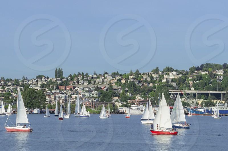 A sailboat regatta on Lake Union in Seattle. photo