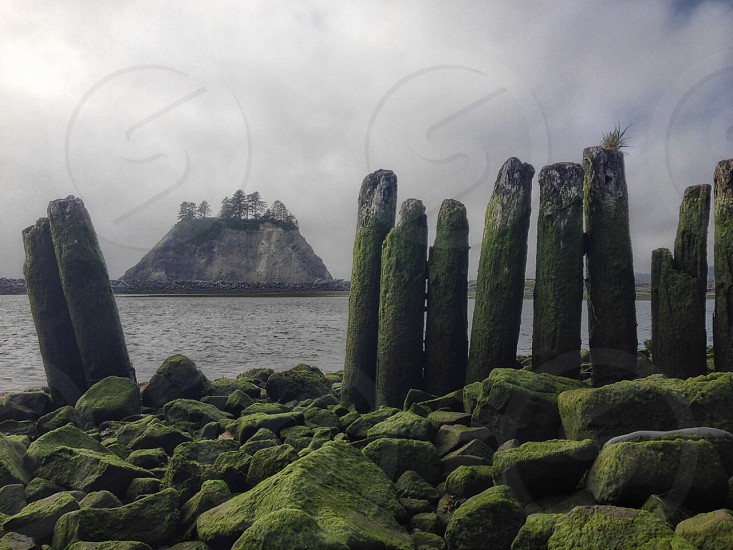 La Push Beach Olympic Peninsula Washington State photo