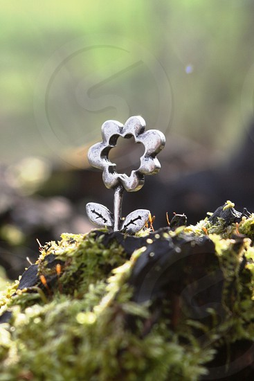 shallow depth of field photo of silver-colored flower accessory on stone photo