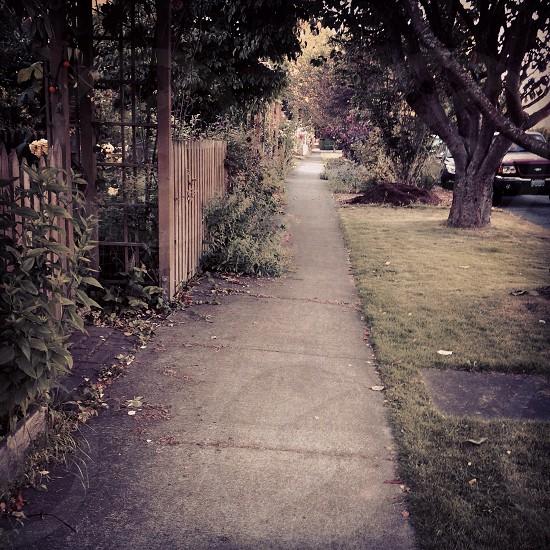 Walking in Columbia. photo