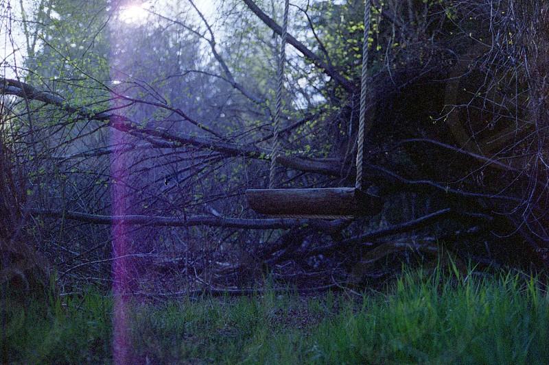 Swing Canon Ae-1 Film 35mm photo