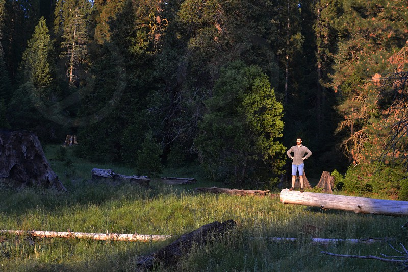 man standing on a wooden log photo