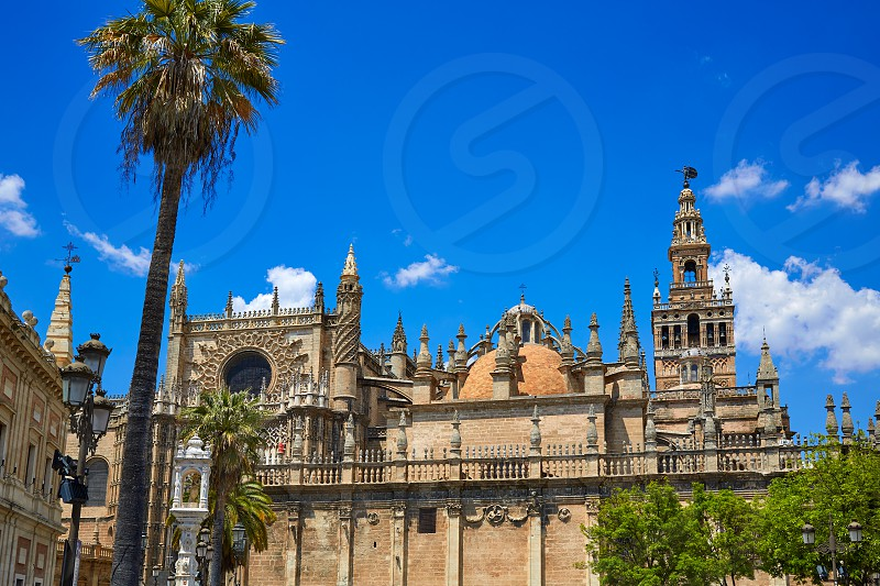 Seville cathedral and Archivo Indias Sevilla Andalusia Spain photo