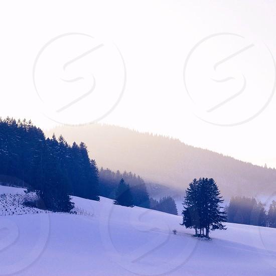 Golden winter sundown photo