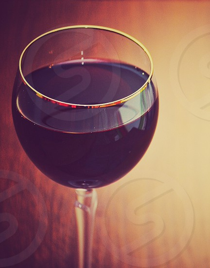 focus photography of clear long stem wine glass photo