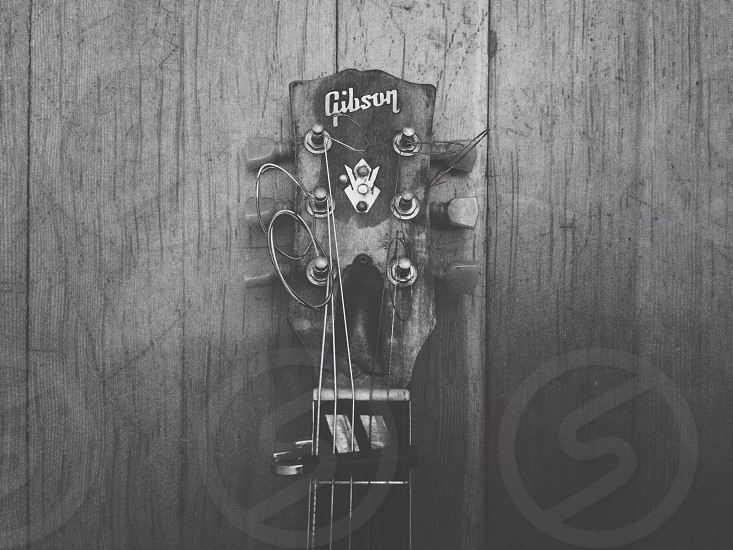 gibson guitar head photo