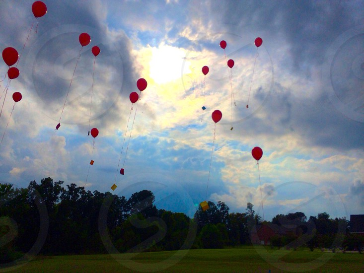 low angle photography of floating red balloons above the sky photo